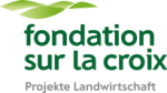 fondation-sur-la-croix-de-4bb5e275