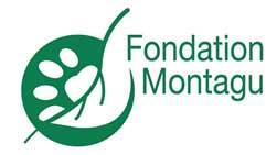 logo-fondation-montagu